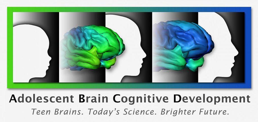abcd-adolescent-brain-research