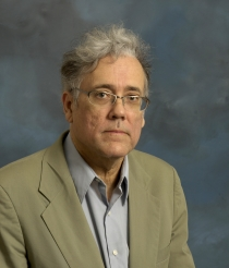 Professor Austin Hughes