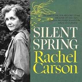 silent-spring-_rachel-carson