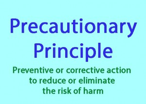 precautionary-principle